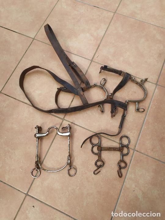 Militaria: Conjunto de bocados y bridas equitación caballería - Foto 4 - 221512018