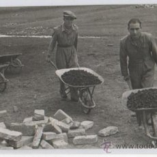 Militaria: FOTOGRAFIA DE PRENSA REFUGIADOS ESPAÑOLES DE LA GUERRA CIVIL TRABAJANDO 1939. Lote 26369234