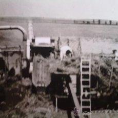 Militaria: FOTO ORIGINAL ESPAÑOLA-GRANJEROS TRABAJANDO EN 1939. Lote 26191416