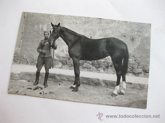 FOTOGRAFIA TAMAÑO POSTAL DE UN SOLDADO DE CABALLERIA - A XIII (Militar - Fotografía Militar - Otros)