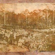 Militaria: FOTOGRAFIA. CUBA, SPANISH AMÉRICAN WORLD. BATALLÓN DE SAN VICENTE, 1896. Lote 29415798