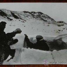 Militaria: ANTIGUA FOTOGRAFIA ORIGINAL DE PRENSA DE LA DIVISION AZUL, REMITIDA DESDE RUSIA A ESPAÑA, TAL COMO S. Lote 31345877