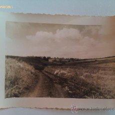 Militaria: FOTOGRAFÍA FRENTE DE RUSIA. ALEMANIA. II GUERRA MUNDIAL. 1939--1945. . Lote 37707775