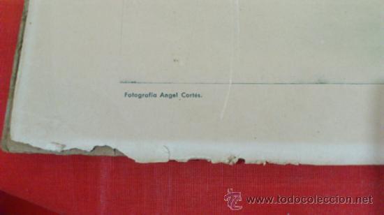Militaria: JOSE ANTONIO FALANGE, RETRATO OFICIAL EN COLEGIO, AYUNTAMIENTO, CUARTELES, ANGEL CORTES - Foto 2 - 37753539