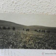 Militaria: CABALLERÍA ESPAÑOLA. GUERRA DE ÁFRICA. HACIA BENI-GORFET. 3º ESCUADRÓN. AÑOS 1925.. Lote 41622450