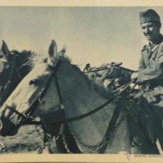 Militaria: FOTOGRAFÍA-POSTAL DIVISIÓN AZUL . Lote 50467606
