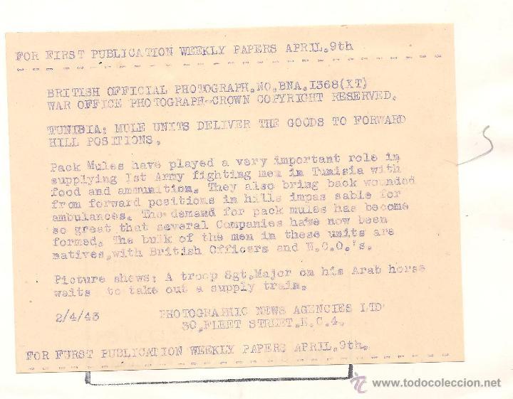 Militaria: OFICIAL BRITÁNICO A CABALLO EN TÚNEZ EN FECHA 2 DE ABRIL DE 1943 - Foto 2 - 52767496