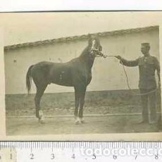 Militaria: FOTOGRAFÍA ACADEMIA MILITAR DE CABALLERÍA VALLADOLID . . Lote 90894255