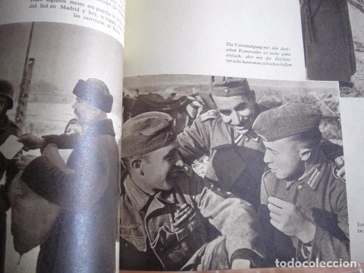 Militaria: Libro División Azul- Voluntarios Españoles en el frente del Este. Firma General - Foto 3 - 98664971