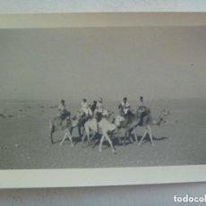Militaria: SAHARA ESPAÑOL : FOTO DE MILITARES DE TROPAS NOMADAS MONTADOS EN CAMELLO. DE CASA ROS.. Lote 123557263