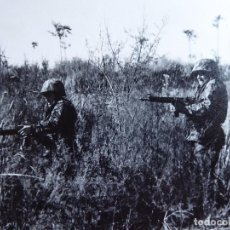 Militaria: FOTOGRAFÍA PARACAIDISTAS BRIGADA PARACAIDISTA. BRIPAC. Lote 128115263