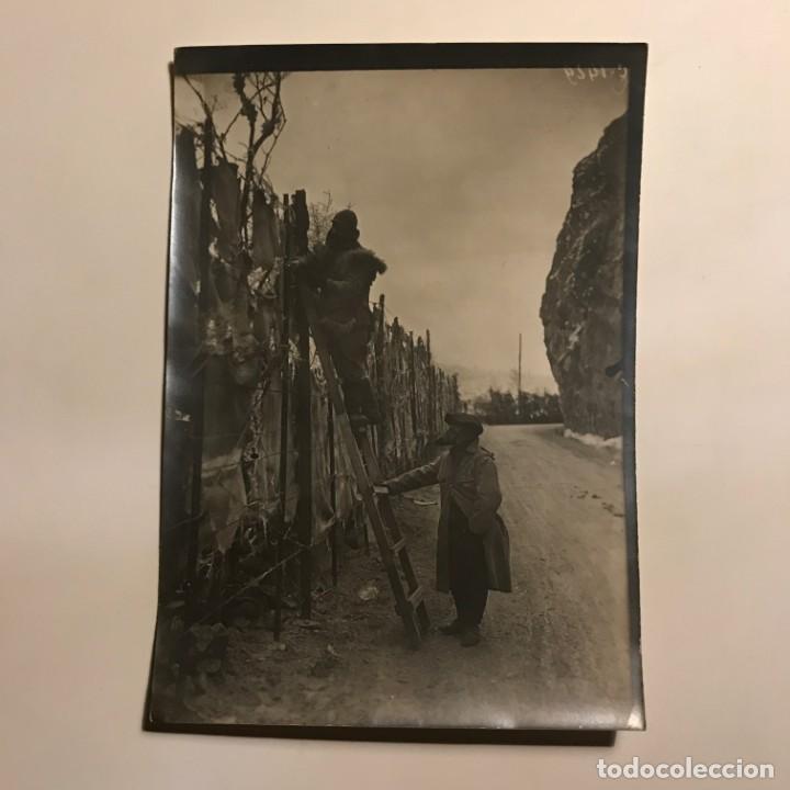 Militaria: Foto camuflaje 18x12,7 cm - Foto 2 - 149322370