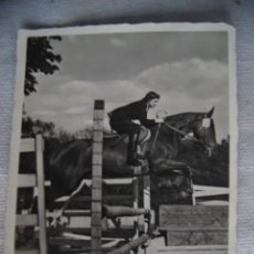 Militaria: FOTO CABALLO DESDE RUSIA EN CAMPAÑA 1943. Lote 155352314