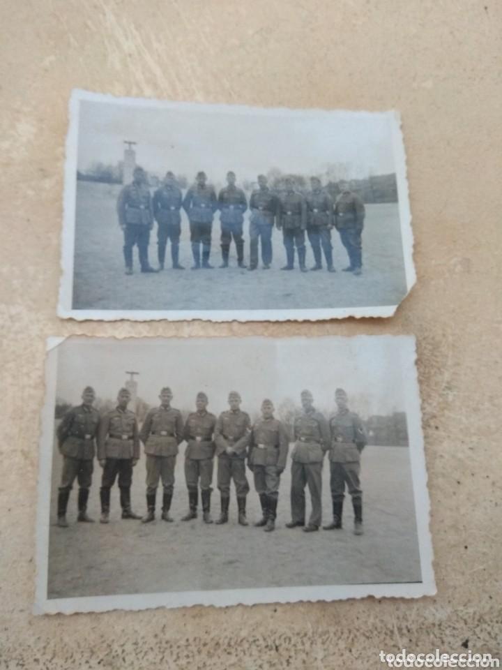 Militaria: Lote de 108 Fotografías Soldado del RAD Servicio de Trabajo del Reich - Ver Fotos - - Foto 3 - 155709550