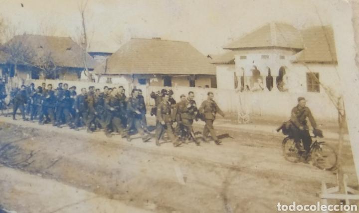 Militaria: Lote de 108 Fotografías Soldado del RAD Servicio de Trabajo del Reich - Ver Fotos - - Foto 151 - 155709550
