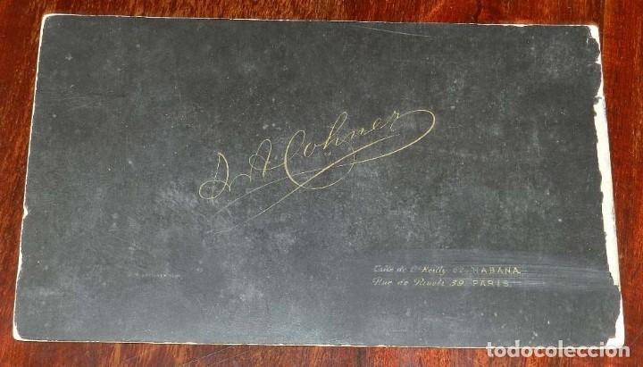 Militaria: FOTOGRAFIA ALBUMINA DE GENTILHOMBRE, CON UNIFORME DE GALA, FECHADA EN 1895 Y DEDICADA CON LA FIRMA D - Foto 7 - 175588122