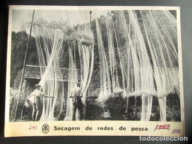 SECANDO LAS REDES DE PESCA. ALEMANIA NAZI. II GUERRA MUNDIAL. (Militar - Fotografía Militar - II Guerra Mundial)