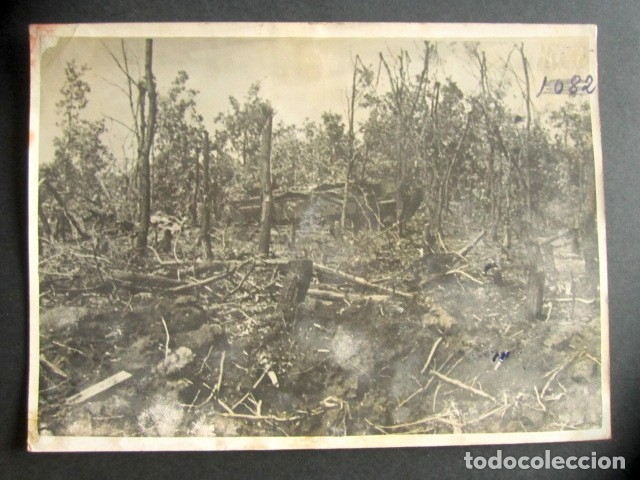 TANQUE NAZI PANZER DESTRUÍDO EN MITAD DEL BOSQUE. ALEMANIA NAZI. II GUERRA MUNDIAL. (Militar - Fotografía Militar - II Guerra Mundial)