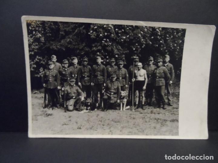 Militaria: GEBIRGSJÄGER CONDECORADOS DE LA WEHRMACHT CON PERROS PASTORES. AÑOS 1939-45 - Foto 2 - 179107015