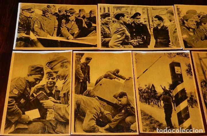 Militaria: Serie I completa con 12 Postales de La división azul, La cruzada europea contra el bolchevismo, Muño - Foto 3 - 181000178