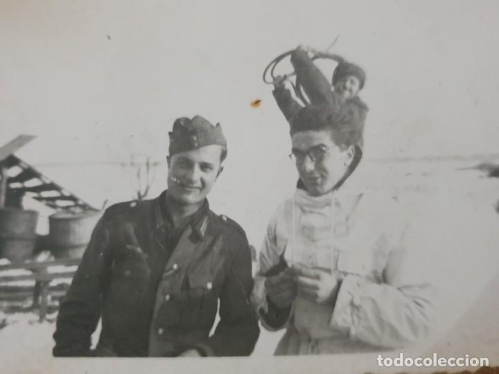 Militaria: Lote fotos division azul - Foto 5 - 193751477
