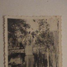 Militaria: ANTIGUA FOTOGRAFIA DE MILITAR.JOSE.CAPILEIRA.GRANADA GUERRA CIVIL 1937. Lote 195192402