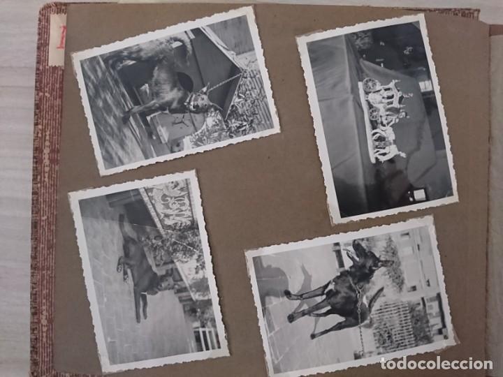 Militaria: GUERRA CIVIL 3 ÁLBUMES FOTOGRAFIAS_ EJÉRCITO ESPAÑOL - Foto 63 - 197097658