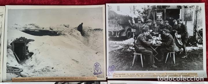 Militaria: 23 FOTOGRAFIAS DE LA II GUERRA MUNDIAL. DIVISION AZUL. ALEMANIA. AÑOS 40. - Foto 4 - 226417232