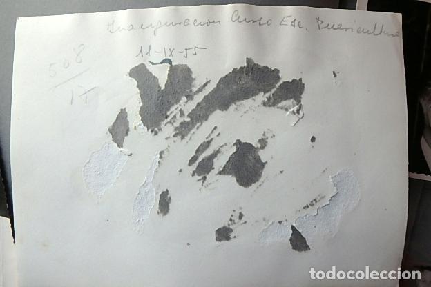 Militaria: (JX-210203)Conjunto de fotografías del Coronel Medico D. Luis Torres Marty , División Azul . - Foto 17 - 238591960