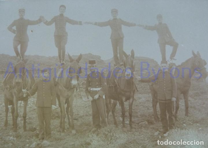 Militaria: FOTOGRAFÍA ANTIGUA. LAS PALMAS DE G.C. SOLDADOS SOBRE MULAS. ÉPOCA ALFONSO XIII (14 X 9 CM) - Foto 2 - 257590285