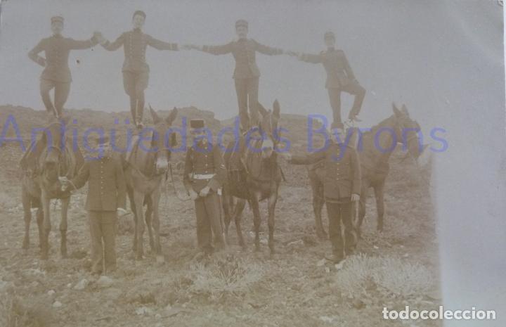 FOTOGRAFÍA ANTIGUA. LAS PALMAS DE G.C. SOLDADOS SOBRE MULAS. ÉPOCA ALFONSO XIII (14 X 9 CM) (Militar - Fotografía Militar - Otros)