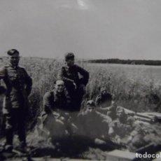 Militaria: SOLDADOS DE ARTILLERIA JUNTO A CAÑON EN CAMPO DE TRIGO. ULM. AÑOS 1939-45. Lote 266316183