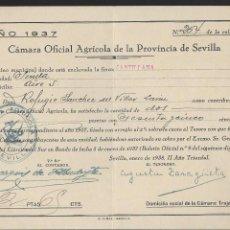 Militaria: CANTILLANA- SEVILLA.- CAMARA OFICIAL AGRICOLA,- AÑO 1937, VER FOTO. Lote 261322990