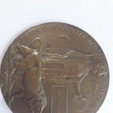 Militaria: MEDALLA/PLACA CONMEMORIAL 1ª GUERRA MUNDIAL. Lote 199129078