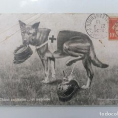 Militaria: POSTAL, EL PERRO SANITARIO Y PATRIOTA, CIRCULADA 27-3-1915. Lote 295523923