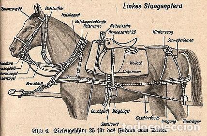 Militaria: Juego de bridas originales de la caballería alemana. Wehrmacht SS 2ªGM - Foto 6 - 137904338