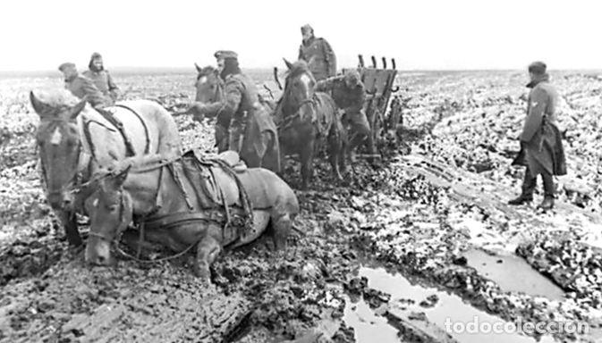Militaria: Juego de bridas originales de la caballería alemana. Wehrmacht SS 2ªGM - Foto 7 - 137904338