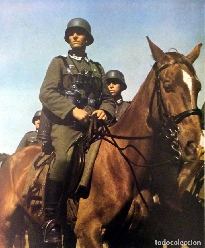 Militaria: Juego de bridas originales de la caballería alemana. Wehrmacht SS 2ªGM - Foto 8 - 137904338