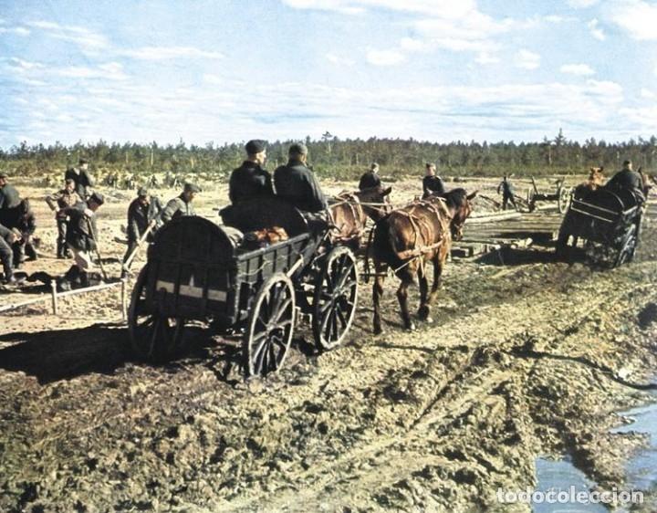 Militaria: Juego de bridas originales de la caballería alemana. Wehrmacht SS 2ªGM - Foto 9 - 137904338