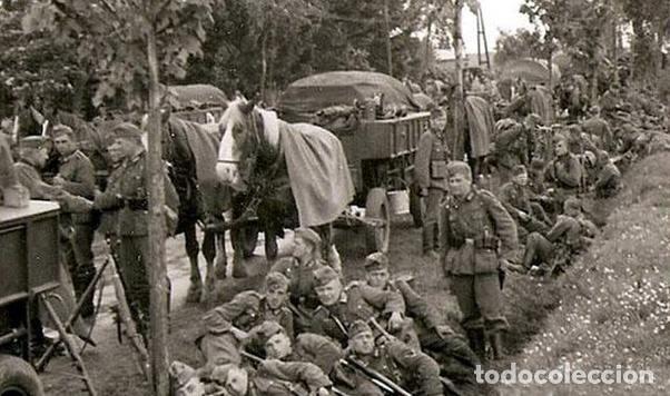 Militaria: Juego de bridas originales de la caballería alemana. Wehrmacht SS 2ªGM - Foto 10 - 137904338