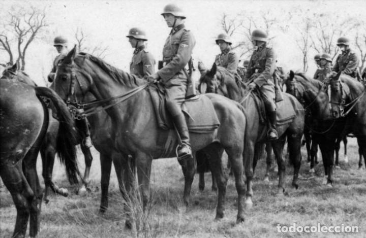 Militaria: Juego de bridas originales de la caballería alemana. Wehrmacht SS 2ªGM - Foto 11 - 137904338