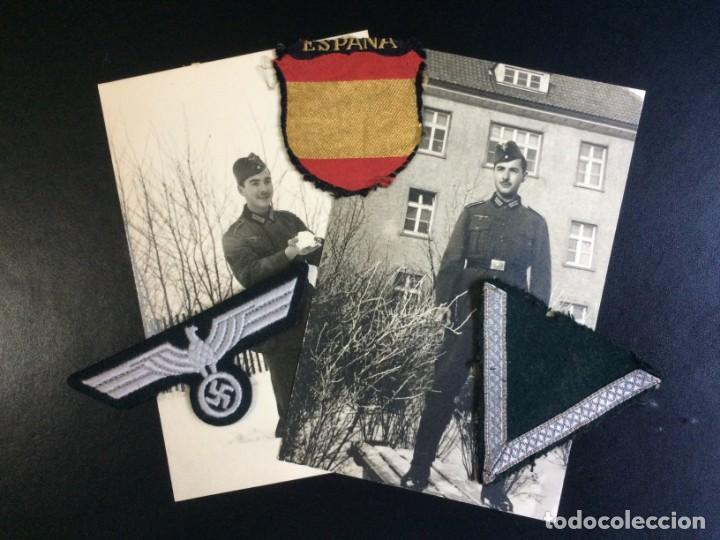 LOTE COMPLETAMENTE ORIGINAL DIVISIONARIO - DIVISIÓN AZUL (Militar - II Guerra Mundial)