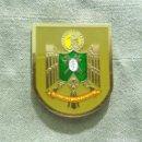 Militaria: DISTINTIVO POLICIA NACIONAL DE PERMANENCIA EN EL PAIS VASCO. Lote 109491678