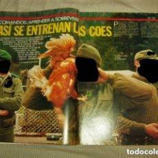 Militaria: COES Y S.A.S AUSTRALIANO Y BRITÁNICO.. Lote 132950038
