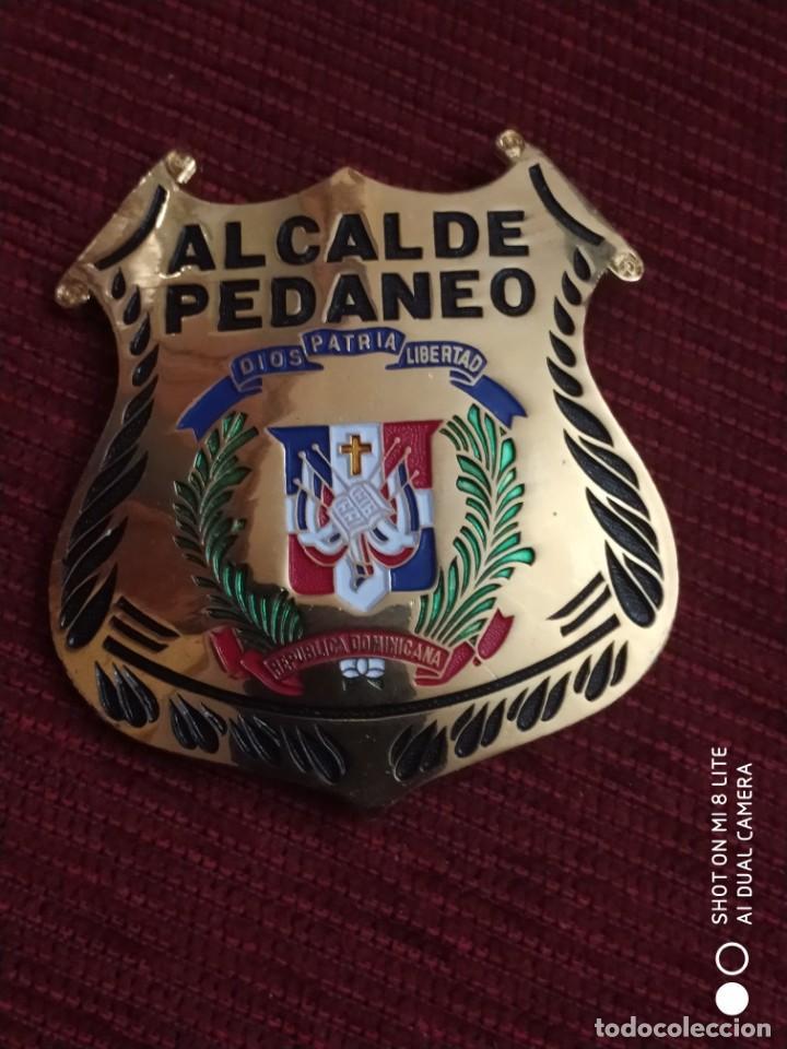 PLACA METAL DE PECHO DE REPUBLICA SANTO DOMINGO ALCALDE PEDANEO POSIBLE SHERIFF POLICIA (Militar - Insignias Militares Extranjeras y Pins)