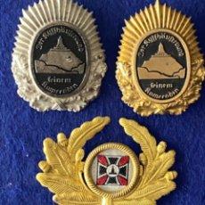 Militaria: COLECCIÓN DE INSIGNIAS DE ALFILER Y GORRA KYFFHÄUSERBUND KAMERADEN. Lote 213514958