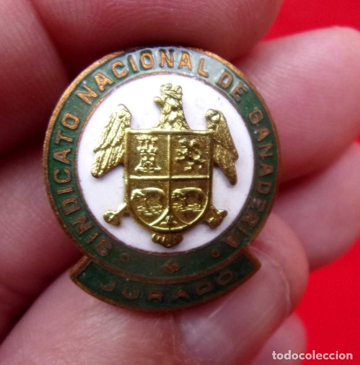 Militaria: INSIGNIA OJAL. SINDICATO NACIONAL DE GANADERÍA. JURADO. ÚNICA EN TC. ÉPOCA DE FRANCO. PIN. - Foto 3 - 215949601