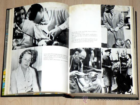 Militaria: LA ULTIMA BATALLA. CORNELIUS RYAN. EDICIONES DESTINO AÑO 1964 - Foto 4 - 27107222