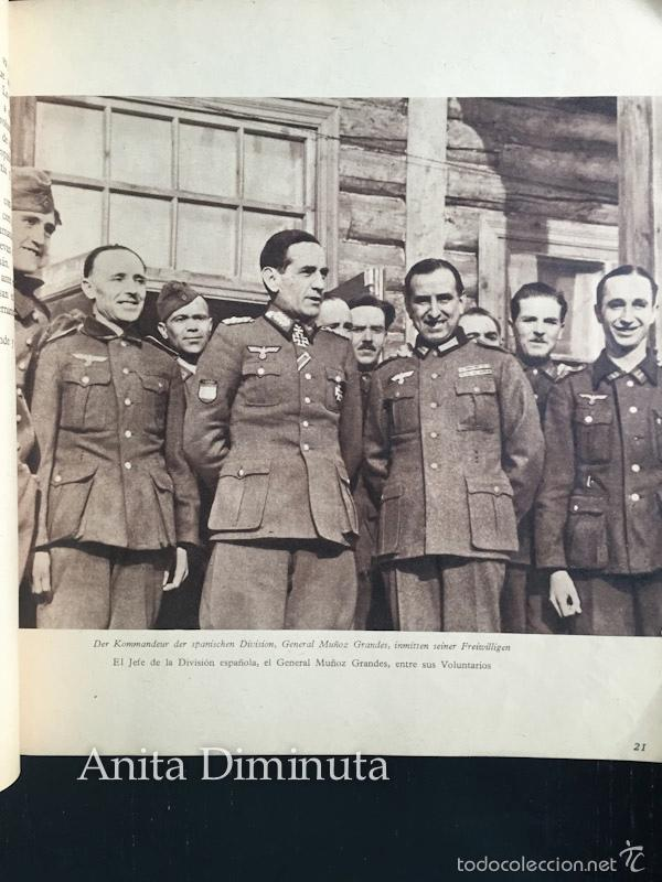 Militaria: MAGNIFICO LIBRO LOS VOLUNTARIOS ESPAÑOLES EN EL FRENTE ILUSTRADO DE LA DIVISION AZUL 1942 - 250 DE F - Foto 4 - 56029411