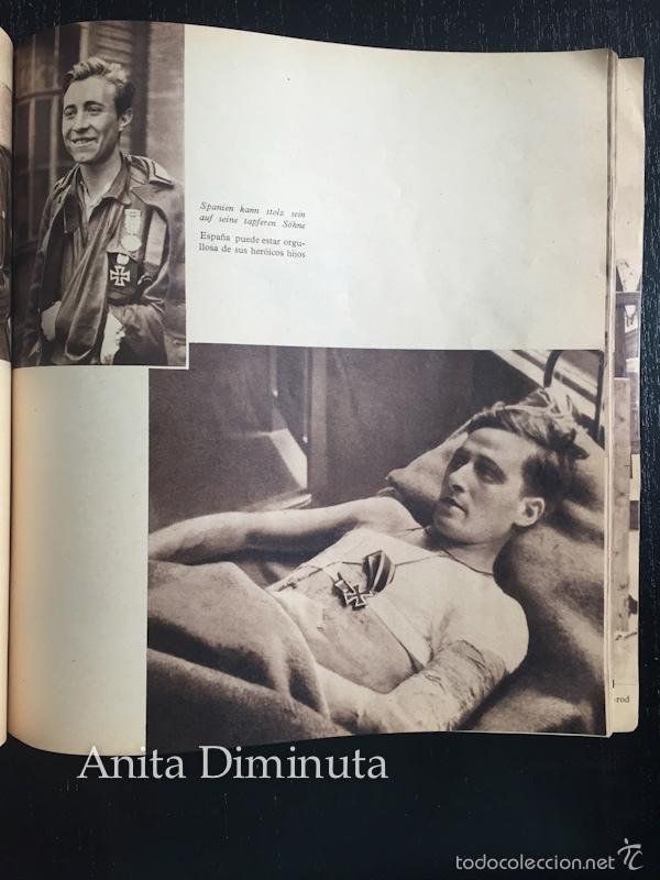 Militaria: MAGNIFICO LIBRO LOS VOLUNTARIOS ESPAÑOLES EN EL FRENTE ILUSTRADO DE LA DIVISION AZUL 1942 - 250 DE F - Foto 6 - 56029411